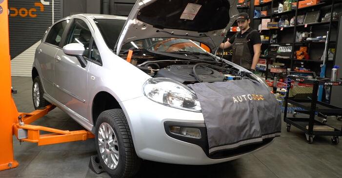 Смяна на Fiat Punto 199 1.4 2007 Многоклинов(пистов) ремък: безплатни наръчници за ремонт