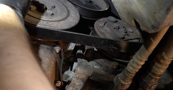 Не е трудно да го направим сами: смяна на Многоклинов(пистов) ремък на Fiat Punto 199 1.4 Natural Power 2011 - свали илюстрирано ръководство