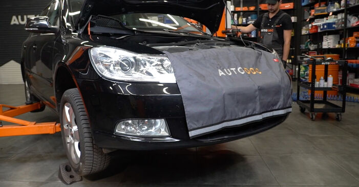 Wechseln Bremsscheiben am SKODA Octavia II Combi (1Z5) 1.9 TDI 4x4 2007 selber
