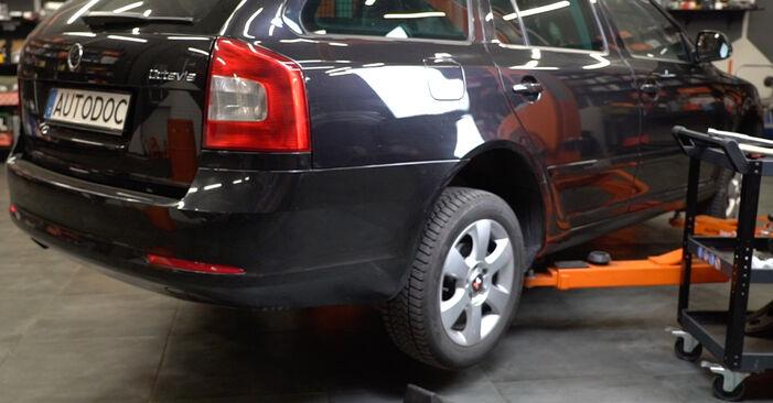 Wechseln Bremsbeläge am SKODA Octavia II Combi (1Z5) 1.9 TDI 4x4 2007 selber