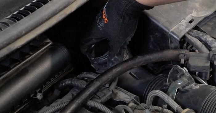 PEUGEOT 207 (WA_, WC_) 1.6 HDi 2008 Thermostat wechseln: Gratis Reparaturanleitungen