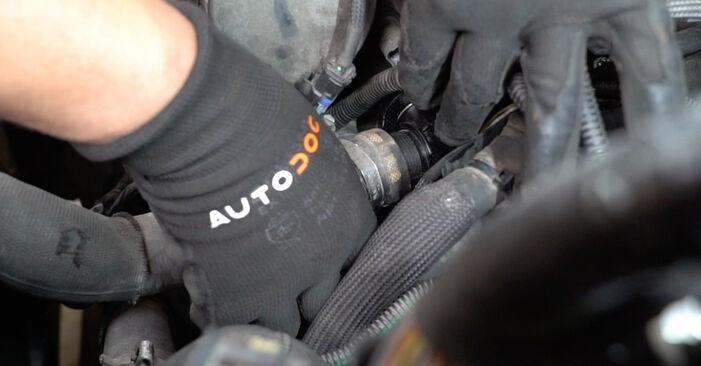PEUGEOT 207 (WA_, WC_) 1.4 2010 Thermostat selbst austauschen - DIY-Anleitung online