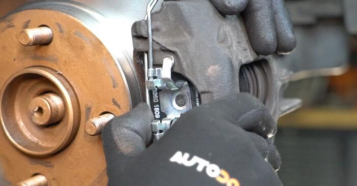 Stufenweiser Leitfaden zum Teilewechsel in Eigenregie von Ford Focus DAW 2001 1.8 16V Radlager