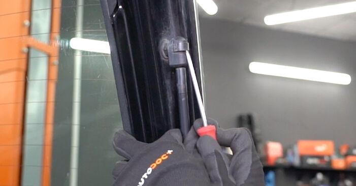 Ford Focus DAW 1.8 Turbo DI / TDDi 2000 Tailgate Struts replacement: free workshop manuals