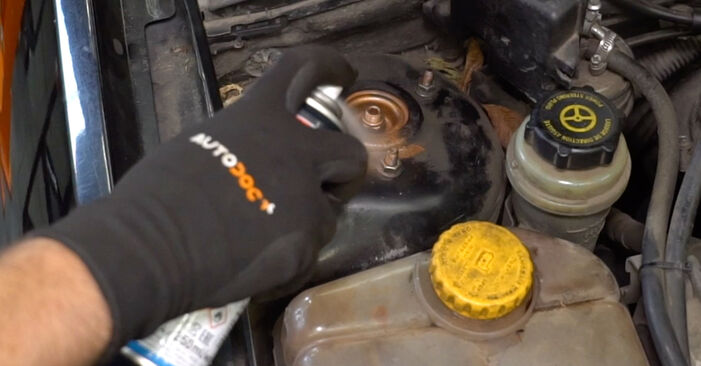 Changing Springs on FORD FOCUS (DAW, DBW) 1.4 16V 2001 by yourself