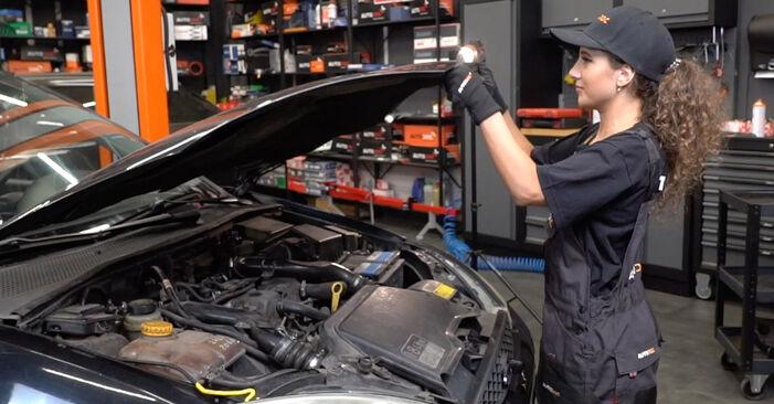 Come cambiare Dischi Freno su Ford Focus DAW 1998 - manuali PDF e video gratuiti