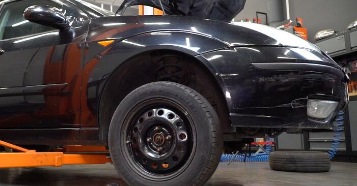 Keilrippenriemen Ihres Ford Focus DAW 1.6 16V Flexifuel 2006 selbst Wechsel - Gratis Tutorial
