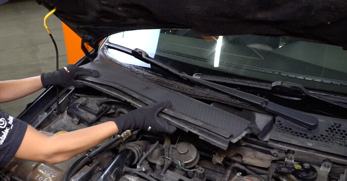 Changing Pollen Filter on FORD FOCUS (DAW, DBW) 1.4 16V 2001 by yourself