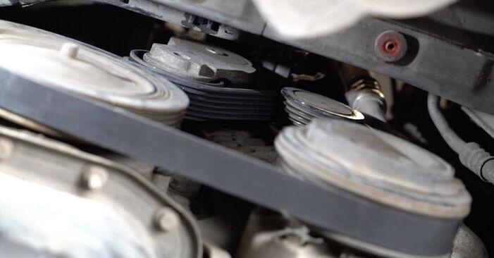 Mennyi ideig tart a csere: Hosszbordás szíj Ford Fiesta ja8 2016 - tájékoztató PDF útmutató
