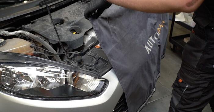 Ford Fiesta ja8 2021 1.4 LPG Hosszbordás szíj csináld magad csere - javaslatok lépésről lépésre
