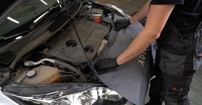 FORD Fiesta Mk6 Hatchback (JA8, JR8) 1.25 2009 Hosszbordás szíj csere – minden lépést tartalmazó leírások és videó-útmutatók