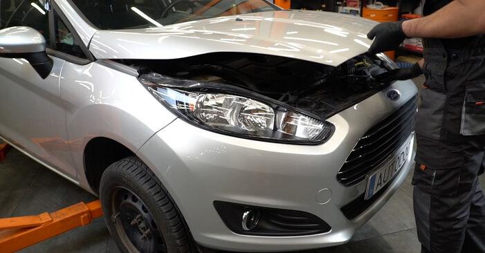 Come cambiare Dischi Freno su Ford Fiesta ja8 2008 - manuali PDF e video gratuiti