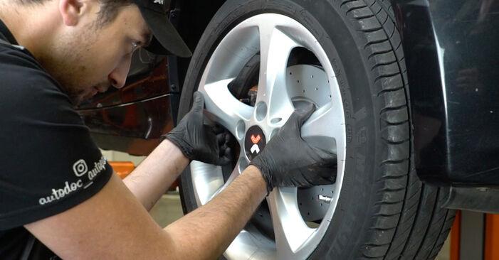 Wechseln Bremsscheiben am BMW 1 Coupe (E82) 118d 2.0 2009 selber