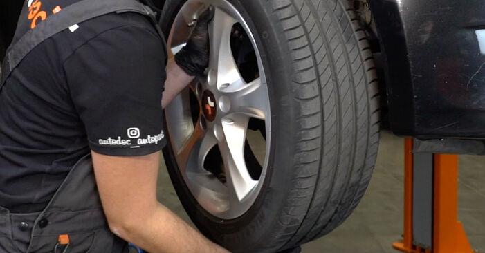 Wie man BMW 1 SERIES 125i 3.0 2007 Radlager wechselt - Einfach nachzuvollziehende Tutorials online