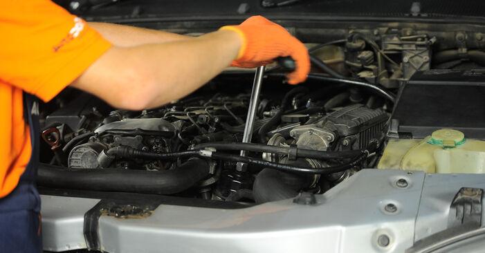 Wie schwer ist es, selbst zu reparieren: Ölfilter ML W163 ML 500 5.0 (163.175) 2004 Tausch - Downloaden Sie sich illustrierte Anleitungen