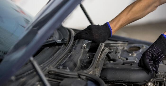 BMW E46 330d 2.9 2000 Oro filtras, keleivio vieta keitimas: nemokamos remonto instrukcijos