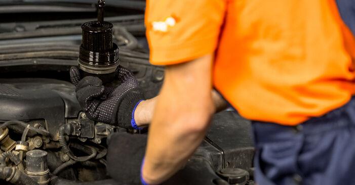 Schritt-für-Schritt-Anleitung zum selbstständigen Wechsel von BMW E46 2000 316i 1.9 Ölfilter