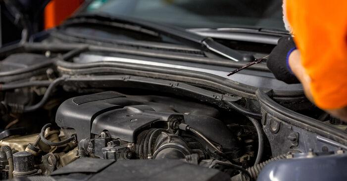 Kiek užtrunka keitimas: BMW E46 1995 Alyvos filtras - informatyvi PDF instrukcija