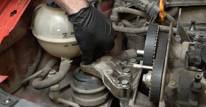 Wasserpumpe + Zahnriemensatz Seat Ibiza 6l1 1.2 2004 wechseln: Kostenlose Reparaturhandbücher