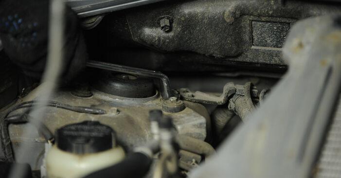 Hoe lang duurt het wisselen van Veerpootlager Nissan X Trail t30 2009 – informatieve pdf-gebruiksaanwijzing