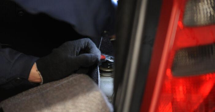 Stoßdämpfer Mercedes W169 A 170 1.7 (169.032, 169.332) 2006 wechseln: Kostenlose Reparaturhandbücher