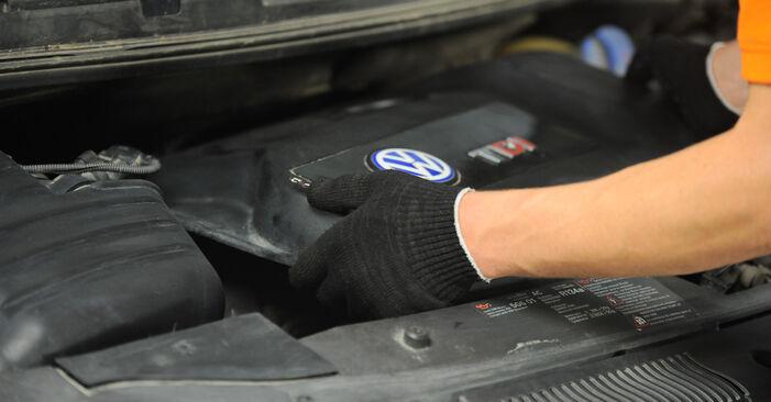 Austauschen Anleitung Ölfilter am VW Sharan 1 2005 1.9 TDI selbst