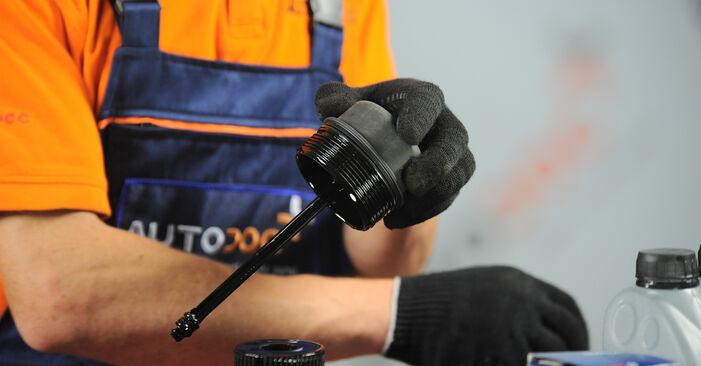 Ölfilter beim VW SHARAN 1.9 TDI 2002 selber erneuern - DIY-Manual