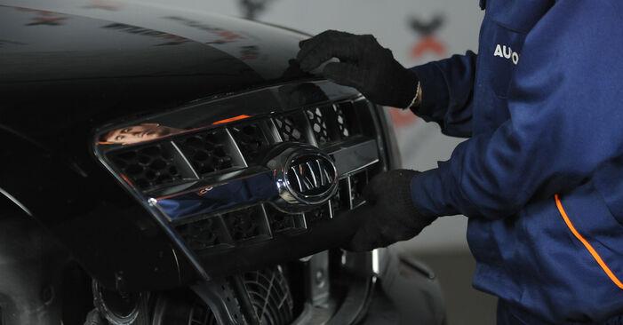 Wie kompliziert ist es, selbst zu reparieren: Bremsbeläge am KIA Sorento jc 2.4 2008 ersetzen – Laden Sie sich illustrierte Wegleitungen herunter