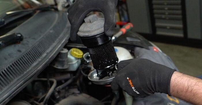 Ölfilter am VW Transporter V Kastenwagen (7HA, 7HH, 7EA, 7EH) 2.5 TDI 4motion 2008 wechseln – Laden Sie sich PDF-Handbücher und Videoanleitungen herunter