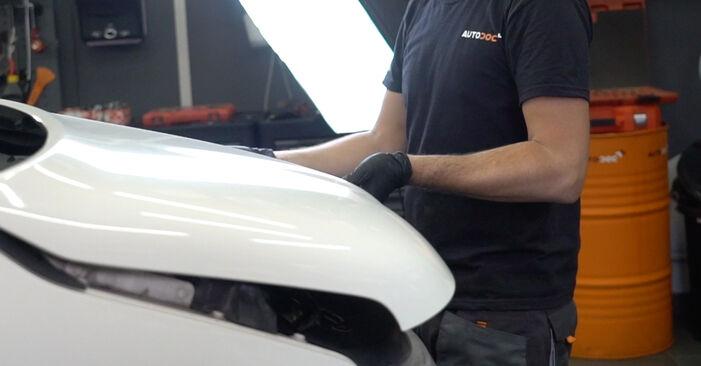 Recomandările pas cu pas pentru înlocuirea de sine stătătoare VW T5 Van 2003 2.5 TDI Filtru combustibil