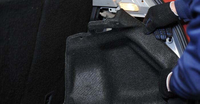 Stoßdämpfer am SUZUKI SWIFT III (MZ, EZ) 1.3 (RS413) 2010 wechseln – Laden Sie sich PDF-Handbücher und Videoanleitungen herunter