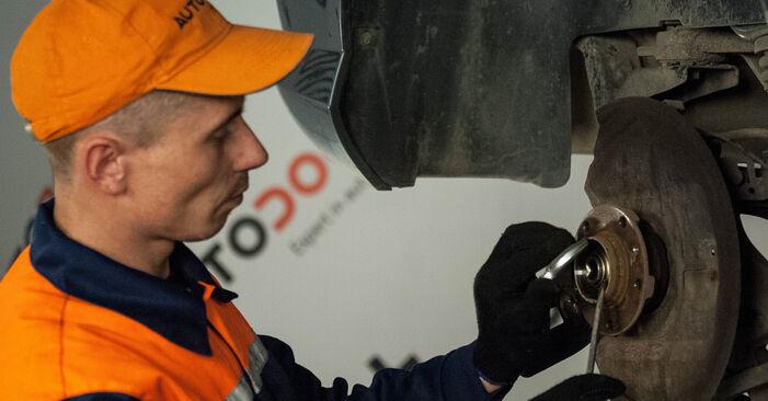 Schritt-für-Schritt-Anleitung zum selbstständigen Wechsel von Peugeot 407 Limousine 2009 2.0 HDi Radlager