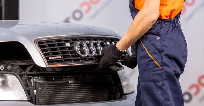 Kaip pakeisti Oro filtras, keleivio vieta la Audi A4 b6 2000 - nemokamos PDF ir vaizdo pamokos
