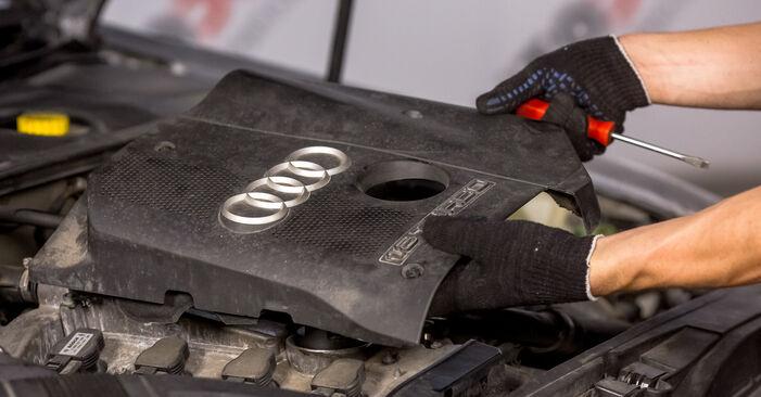 Audi A4 b6 2.0 2002 Spark Plug replacement: free workshop manuals