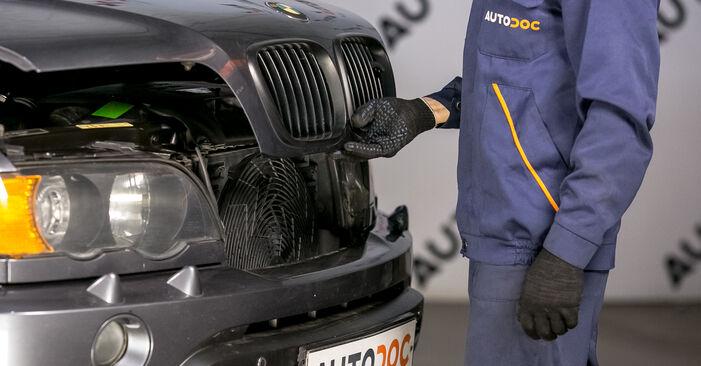 Federn BMW E53 4.4 i 2002 wechseln: Kostenlose Reparaturhandbücher