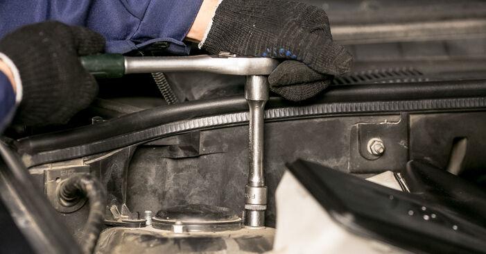 Recomandările pas cu pas pentru înlocuirea de sine stătătoare BMW E53 2005 4.8 is Flansa Amortizor