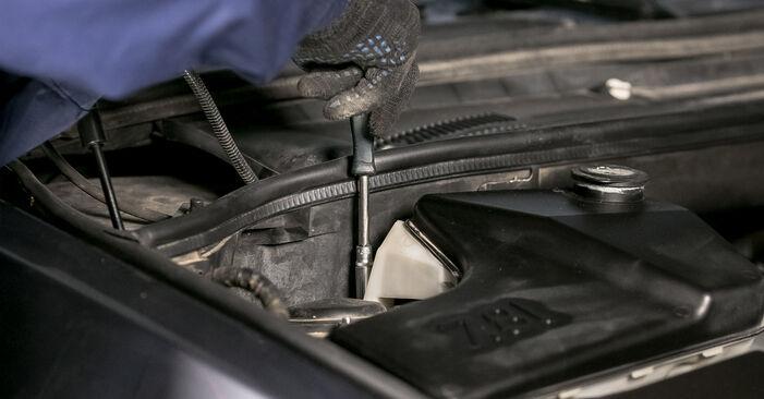 Schimbare Flansa Amortizor la BMW E53 2002 3.0 d de unul singur