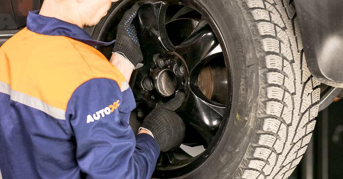 Manualul de înlocuire pas cu pas BMW X5 2007 Flansa Amortizor