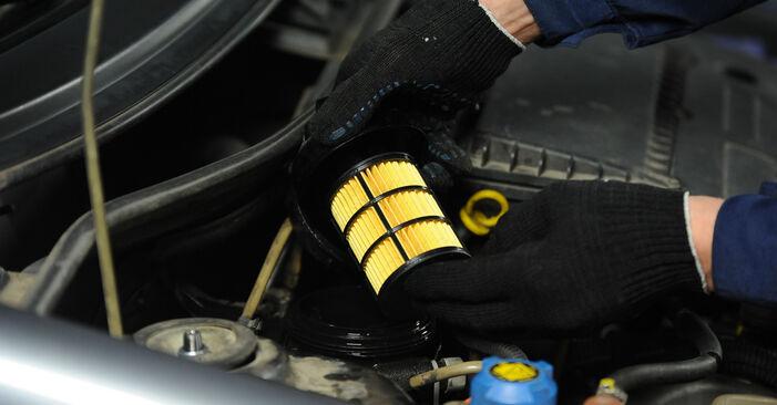 Не е трудно да го направим сами: смяна на Горивен филтър на Fiat Punto 188 1.4 2005 - свали илюстрирано ръководство