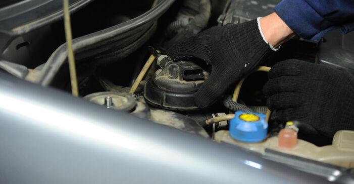 Смяна на Fiat Punto 188 1.2 16V 80 2001 Горивен филтър: безплатни наръчници за ремонт