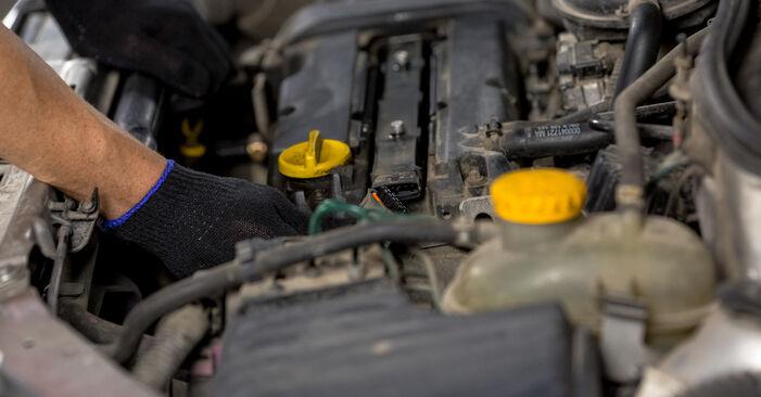 Schritt-für-Schritt-Anleitung zum selbstständigen Wechsel von Opel Corsa C 2003 1.7 DTI (F08, F68) Zündkerzen