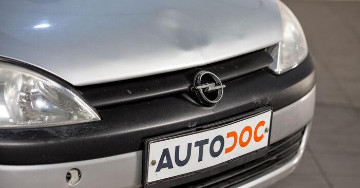 Wie Zündkerzen Opel Corsa C 1.2 (F08, F68) 2000 tauschen - Kostenlose PDF- und Videoanleitungen