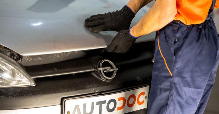 Sostituendo Supporto Ammortizzatore su Opel Corsa C 2000 1.2 (F08, F68) da solo
