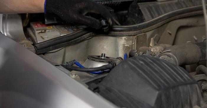 Manualul de atelier pentru înlocuirea de sine stătătoare Corsa C Hatchback (X01) 1.7 DTI (F08, F68) 2001 Flansa Amortizor