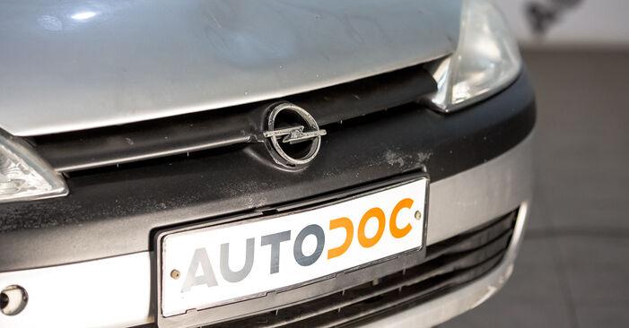 Come sostituire OPEL Corsa C Hatchback (X01) 1.2 (F08, F68) 2001 Supporto Ammortizzatore - manuali passo passo e video guide