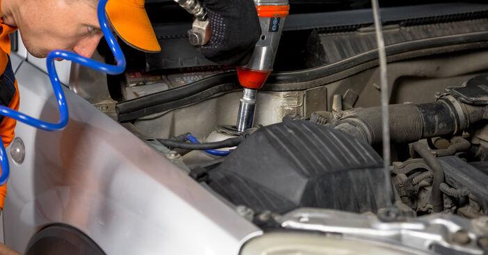 Cât de greu este să o faceți singur: înlocuirea Flansa Amortizor la Opel Corsa C 1.7 DI (F08, F68) 2006 - descărcați ghidul ilustrat