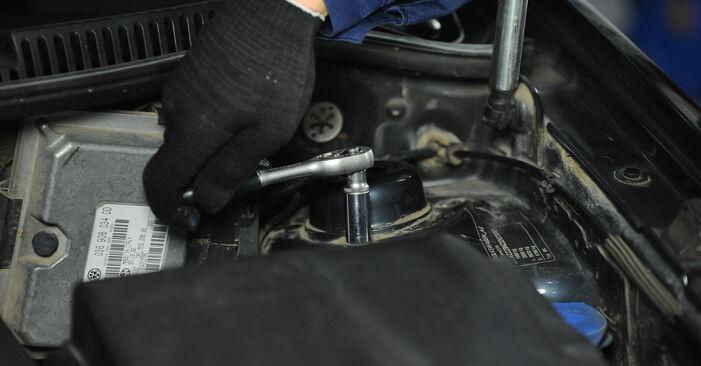Tausch Tutorial Domlager am VW POLO (9N_) 2001 wechselt - Tipps und Tricks