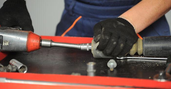 POLO (9N_) 1.9 TDI 2012 Veerpootlager instructies voor doe-het-zelf vervangen
