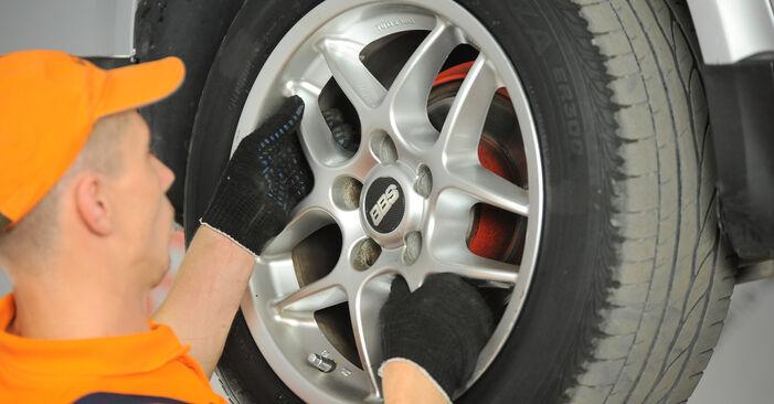 Devi sapere come rinnovare Supporto Ammortizzatore su VW PASSAT ? Questo manuale d'officina gratuito ti aiuterà a farlo da solo