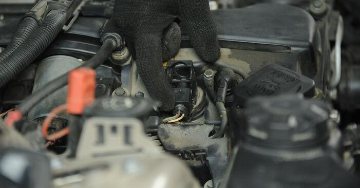 Kiek užtrunka keitimas: BMW E90 2004 Uždegimo žvakė - informatyvi PDF instrukcija